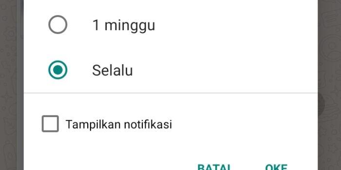 Fitur bisikan notifikasi di WhatsApp